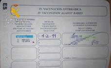 Investigado en Burgos por falsificar el pasaporte sanitario de su perro
