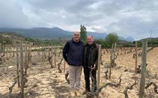 El Ministerio de Agricultura reconce 84 viñedos singulares en Rioja, uno de ellos de Carlos Moro