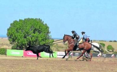 Mucho nivel y expectación en el Concurso de Acoso y Derribo de Ciudad Rodrigo