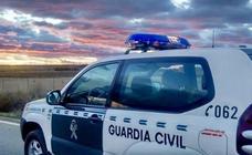 Dos nuevos casos de maltrato animal en Ávila