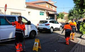 La Brigada Zoonosis atiende cinco alertas al día para exterminar roedores e insectos en Valladolid