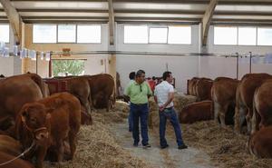 Críticas a La Salina por suspender el mercado de ganados durante 22 días