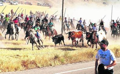La cifra de festejos taurinos cae en la provincia de Valladolid por primera vez en cinco años