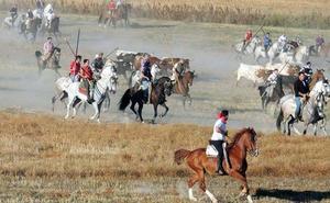 Mozoncillo celebra tres décadas de sus encierros a caballo