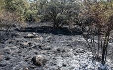 Los propietarios de Caserío de Urgel aseguran que el incendio de La Granja era «la crónica de un desastre anunciado»
