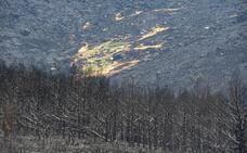 Esta es la huella de destrucción dejada por el incendio de La Granja del 4 de agosto (1)