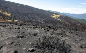 López-Escobar: «En el punto exacto del origen del incendio no se han encontrado cristales, aunque los hay en la zona»