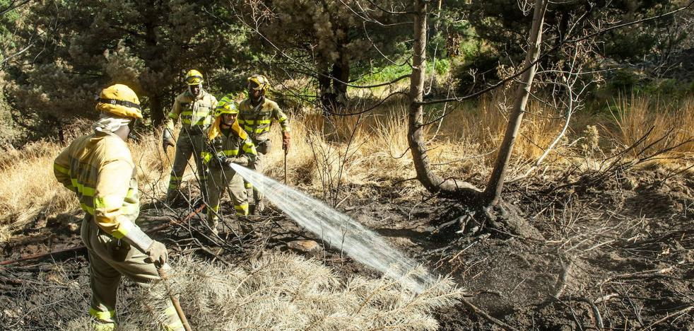 Arden 7.950 hectáreas en los 1.231 incendios registrados hasta julio en Castilla y León
