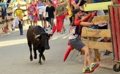 Catorce municipios de Palencia celebran espectáculos taurinos este año, dos menos que en 2018
