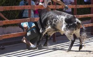 Sufre un varetazo en el encierro de Viana tras ser alcanzado por el astado en la talanquera