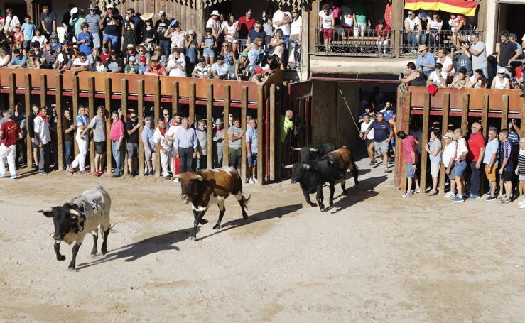 Imágenes del primer encierro en Peñafiel
