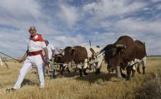 Tudela despide sin incidentes unas fiestas marcadas por toros y música