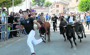 La Junta ha autorizado hasta ahora 70 festejos taurinos en la provincia