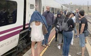El humo de un tren de mercancías obliga a detener y ventilar el Alvia Madrid-Gijón en León