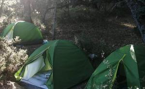 Detenidas cinco personas en Segovia que vivían en tiendas de campaña para vigilar 1.525 plantas de marihuana