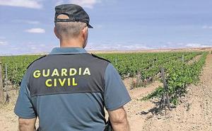 La Guardia Civil localiza a una persona de avanzada edad que se encontraba desaparecida en Pesquera de Duero
