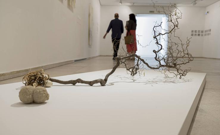 Carlos de Paz expone sus últimas obras en la Sala 0 del Museo Patio Herreriano
