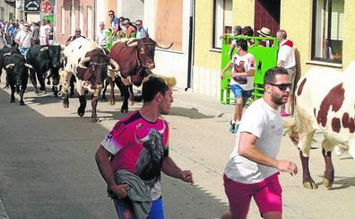 El popular 'Hasta luego San Agustín' baja el telón a las fiestas de Pedrajas