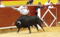 'Use' gana por cuarta vez consecutiva el campeonato de recorte de Palencia