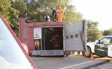 Dado de alta el bombero embestido por un novillo cuando intervenía en un accidente