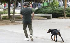 El Ayuntamiento de Zamora cobrará una tasa de nueve euros por perro para sufragar servicios