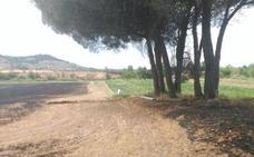 Investigan a una persona por un delito de incendio forestal en Bocos de Duero