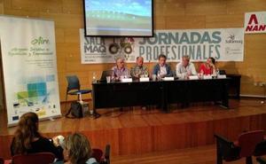Los grupos regionales de acción local esgrimen el proyecto Aire contra el éxodo de los pueblos