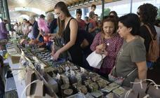 Mercado ecológico en la Plaza de España