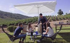 Pisado tradicional de la uva y pícnic entre viñedos en Cepa 21