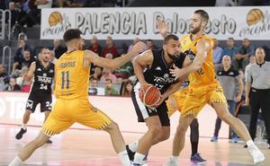 Derroche de triples del Palencia Baloncesto para fulminar al Ourense