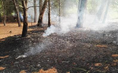 Los bomberos intervienen por un incendio en el monte de Laguna de Duero