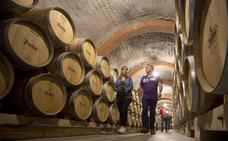 El experto en enoturismo será la profesión más demandada del sector vitivinícola