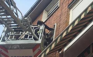 Los bomberos intervienen tras el desprendimiento de una cornisa en Valladolid