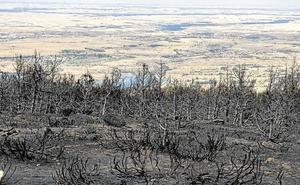 Las cenizas del incendio de agosto en La Granja acechan el arroyo Carneros