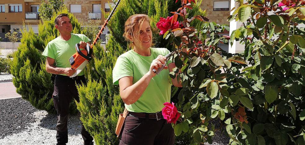 La ecojardinería como pasión y oportunidad laboral