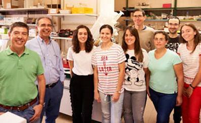 Aprovechan residuos industriales para desarrollar hongos usados en alimentación