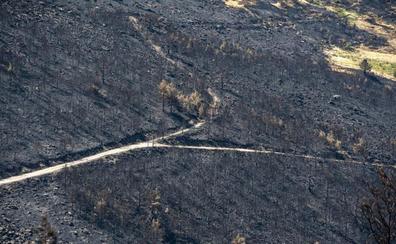 Barreras y desvíos de arroyos salvan el estanque del Mar de las cenizas del incendio de La Granja