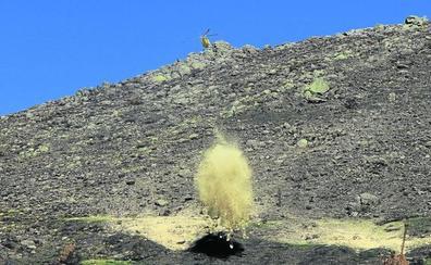 La Junta acelera la restauración del monte abrasado en el incendio de agosto