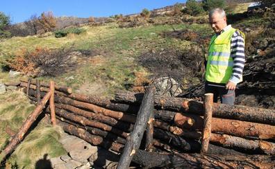 La Junta acelera la restauración del monte de la sierra de Guadarrama abrasado en el incendio de agosto