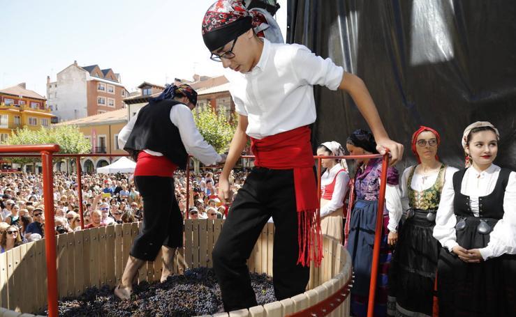 Fiesta de la Vendimia en Aranada de Duero (2/2)