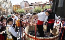 La Fiesta de la Vendimia de Ribera del Duero abre una campaña que apunta a una gran calidad