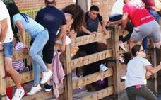 Dos mujeres heridas en el último encierro de Íscar tras romper el toro la talanquera