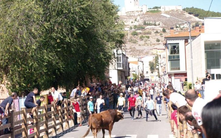 Galería completa del encierro y fiestas de San Miguel en Íscar