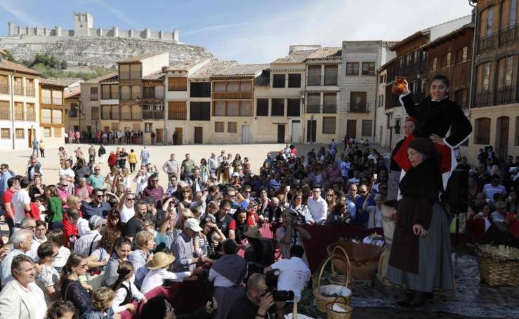 Fiesta de la Vendimia en Peñafiel