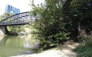 Una senda permitirá recorrer un kilómetro al borde del río desde el parque Bolaños de Valladolid
