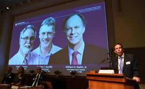 Nobel de Medicina para los descubridores del mecanismo de 'respiración' de las células