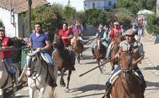 Encierro taurino en El Maíllo