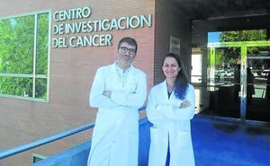 Importante ayuda económica para dos nuevos proyectos de investigación del CIC de Salamanca