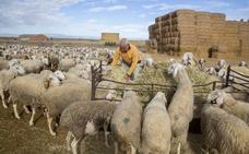 La provincia de Valladolid se vacía y perderá 111.800 habitantes en treinta años, el 21%