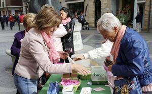 El programa de detección del cáncer de mama diagnostica 85 tumores en Palencia en 2019